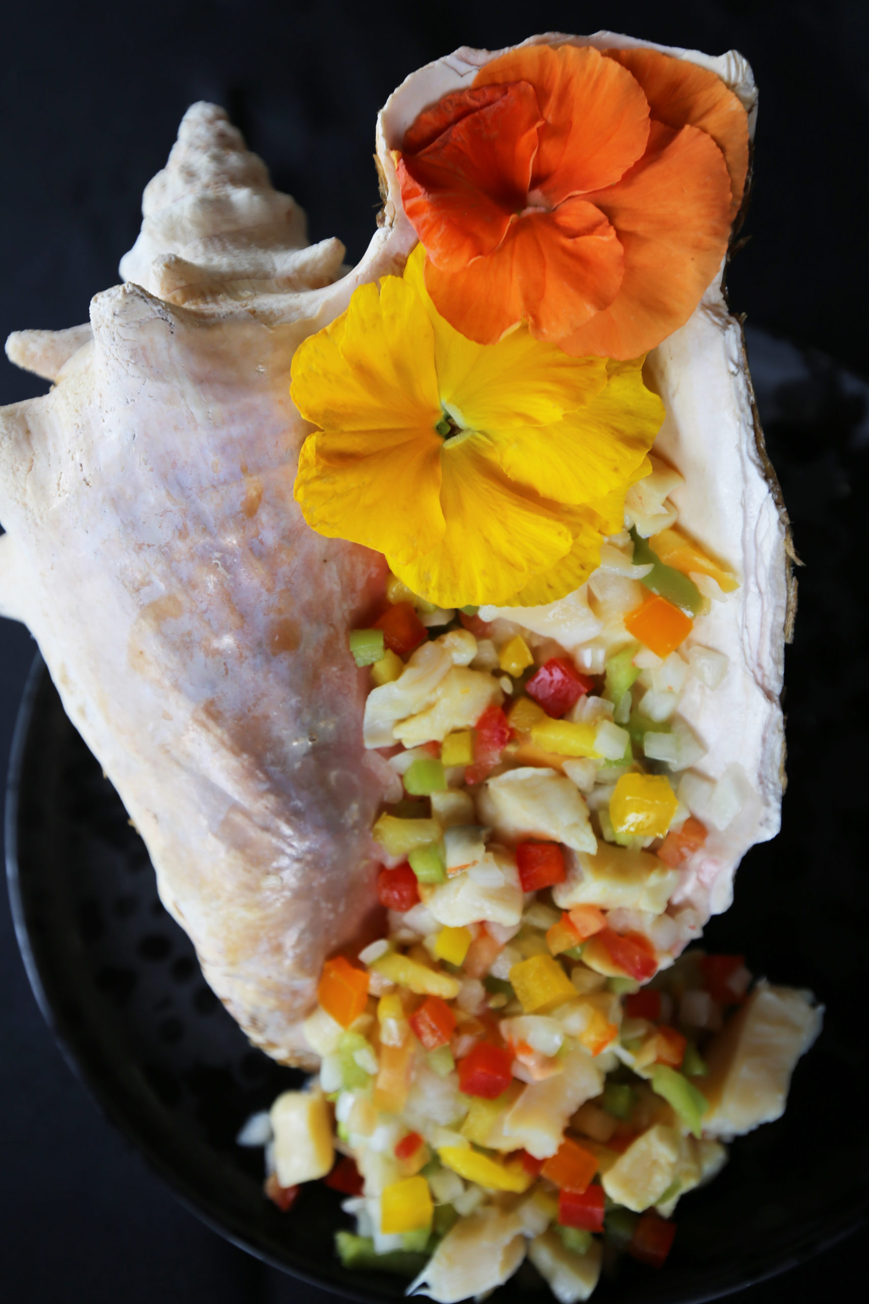 Conch Salad – KB